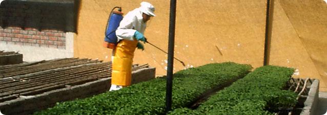 Aspersoras aspersores aspersoras para fumigacion for Aspersores agricolas